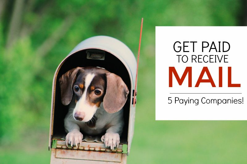 5 Ways To Get Paid to Receive Mail - [Legit & Researched!]