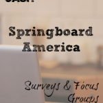 Make Money with Springboard Survey Panel